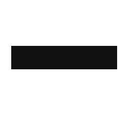 ZellV Logo 250